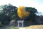 写真:中野の神社-鎮西町中野